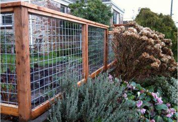Czego zrobić ogrodzenie tańsze? Materiał na podejmowanie