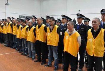 La peine de mort en Chine. Pour toute infraction, imposée une telle peine?