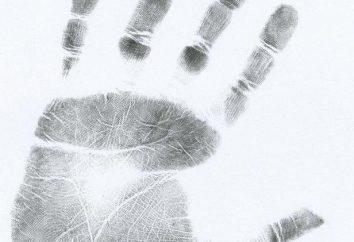 De huellas dactilares: tipos y clases