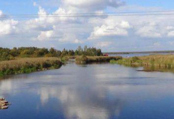 Riserva naturale dello Stato Yuntolovsky. Dove si trova?