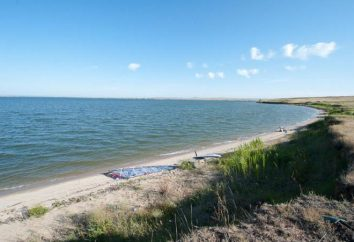 Shulbinsky Reservoir opis, wakacje, plotki o zaporze