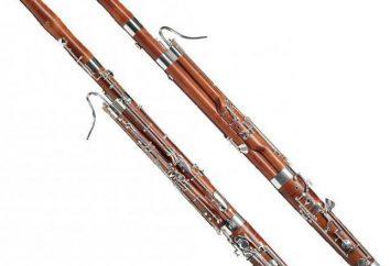 Fagot – instrument muzyczny. Opis, funkcje