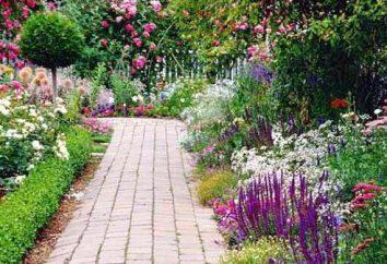 strona Kraj: ozdobić swoje ręce przy pomocy świeżych kwiatów