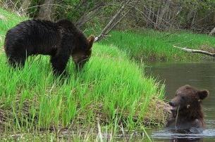 Znameninye Reservate und Nationalparks von Belarus