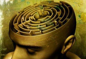 La mente subconsciente – esto … La psicología subconsciente