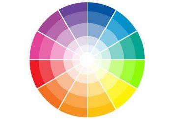 ¿Cómo combinar los colores en el interior de la sala de estar?