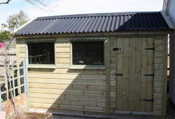 Als deckt das Dach des Hauses kostengünstig und effizient?