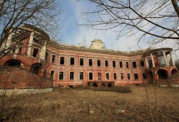 Dove si trova il palazzo della Gioia? Manor Joy: come arrivarci?