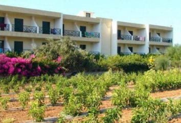 Hotel Despo Hotel 3 * (Creta, Grécia): comentários, descrições, números e comentários