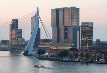 Port de Rotterdam: histoire, description, attractions