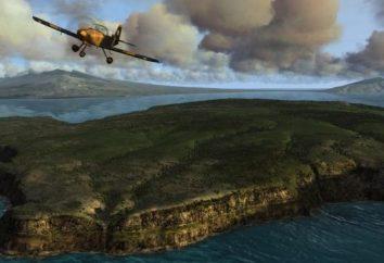 Buon simulatore di volo dovrebbe essere la lotta