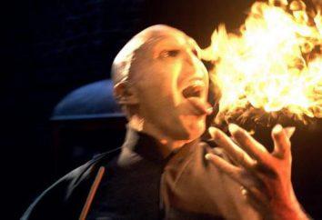 Tom Riddle: el papel del villano, y los actores que la realizó