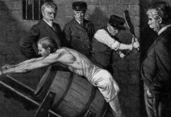 El castigo es … El Servicio Federal para la Ejecución de Sentencias. Los propósitos del castigo. El sistema de castigo