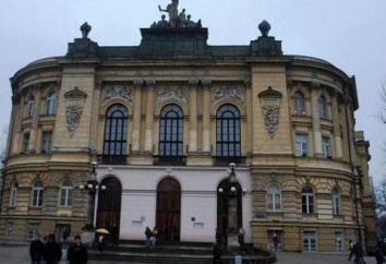 Universidad Técnica Estatal de Nizhny Novgorod. R. E. Alekseeva: almacenes, ramas