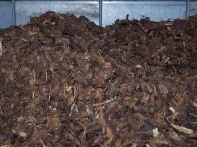 fumier de poulet: application comme engrais