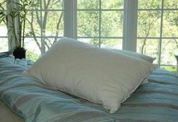 Almohada hecha de bambú – exótico o necesidad?