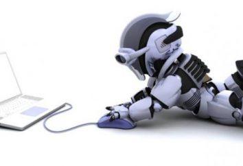 """Czym jest robot? Narzędzie gąsienicowy """"Yandex"""" i Google"""