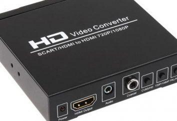 Taka znacząca Adapter HDMI – tulipan kwiat, który nie