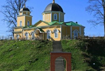 regione Luga: Leningrad Oblast