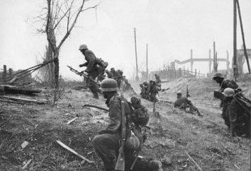 Les travaux sur la guerre. Travaux de la Grande Guerre patriotique. Romans, nouvelles, essais