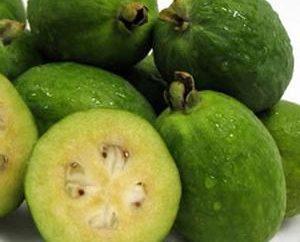 Frutta esotica e sana di feijoa