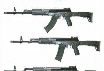 Broń strzelecka: AK-12. Cechy AK-12
