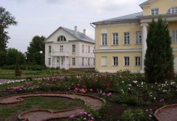 Sviblovo Manor in Moskau