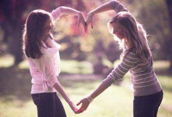 """Wie schreibe ich einen Aufsatz """"Mein bester Freund"""": ein Plan, Tipps und Tipps"""