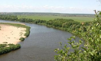 nature variée et charmant du bord de Voronej