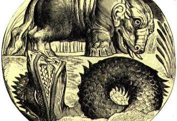 Behemoth: mitologia, etymologia, odmiana