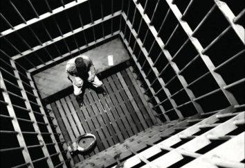 Przestępstwo przeciwko państwu: pojęcie, rodzaje, charakterystyka