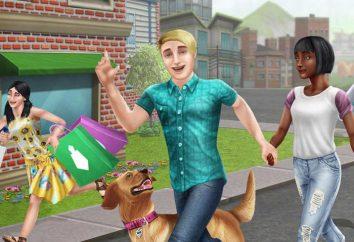 Gioco Sims Freeplay: il passaggio di posti di lavoro