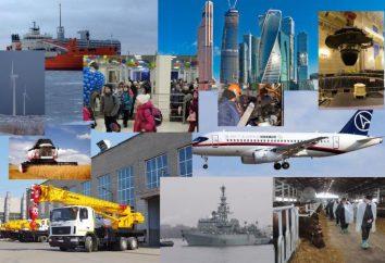 La diversificazione dell'economia. La diversificazione dell'economia russa