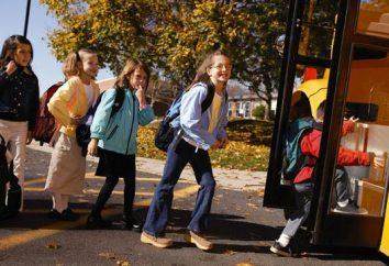 As regras básicas do transporte de crianças em ônibus