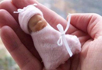 morte del feto e le sue cause