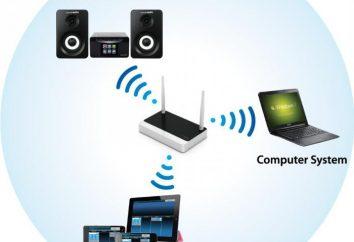 UPnP: co to jest? UPnP DLNA serwer multimediów domu