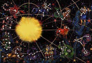 24 giu. Zodiaco – Il cancro in quanto è