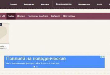 """Das Ergebnis in den sozialen. Netzwerke. Wie man Geld auf der Husky in """"Vkontakte"""" zu machen?"""