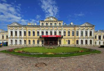 Dom-Muzeum Anny Ahmatovoy
