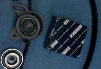 Calendrier installation de la ceinture – il ne fait pas d'erreurs?