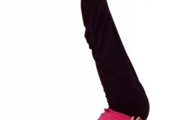 posture invertite. Yoga per principianti a casa
