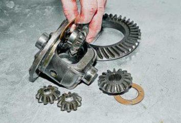 VAZ 2106 Hinterachse, Getriebe. Einstellung, Reparatur, Ersatz