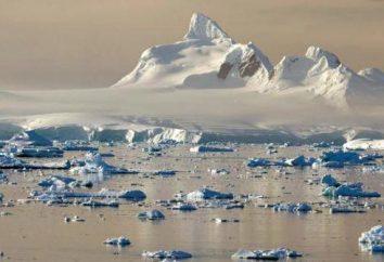 Mare di Weddell e le sue caratteristiche