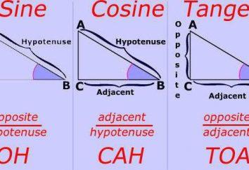 Storia della trigonometria: nascita e lo sviluppo