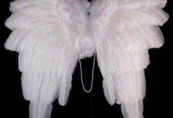 Las preparaciones para la feria. Hacer las alas de ángel con sus propias manos (tres formas)