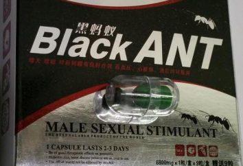Le médicament « Black Ant »: mode d'emploi