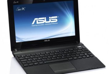 X102B (ASUS): Dane techniczne