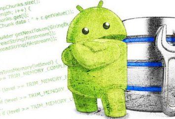 """Software di ottimizzazione """"Android"""". Panoramica dei programmi, istruzioni e raccomandazioni"""