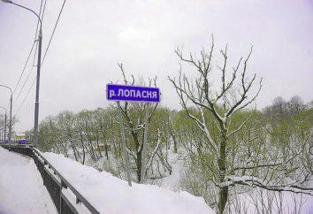 Lopasnya (rzeka): charakterystyka i zdjęcia