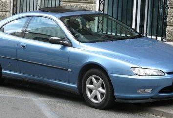Quello che la gente sta dicendo circa le Peugeot 406 risposte?